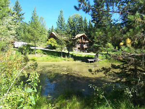 Private, waterfront, large vaulted ceiling log home on 8.7 acres