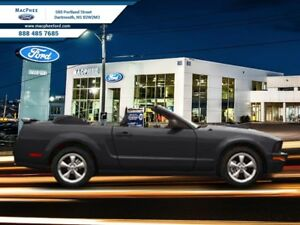 2008 Ford Mustang GT  - Low Mileage