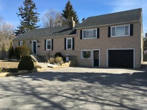 Amazing over 1/2 acre Lot & House