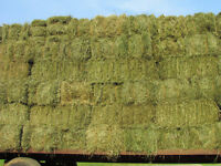 Farm work including putting up hay - part-time/on-demand