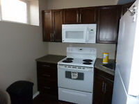 2 bed room Legal basement suite in Timberlea for rent.