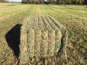 3x4 2nd cut hay for sale