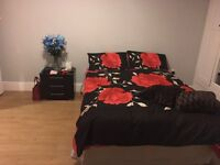 Large double bedroom ( 2 mins walk from Gants Hill station)