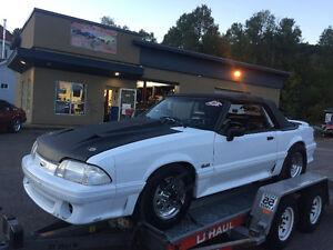 Mustang drag/rue