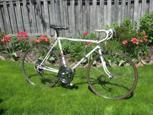 "Vintage CCM Targa 10 speed 27"" road bike"