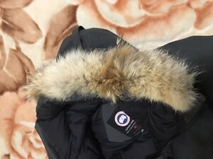 Canada goose grey chilliwack bomber large  West Island Greater Montréal image 2