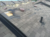 Professional Roof Repairs from $150
