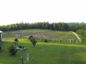 Country home, horse /hobby farm with 75 acers in SW NB Peterborough Peterborough Area image 4