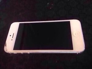 iPhone 5 16GB White (Rogers)