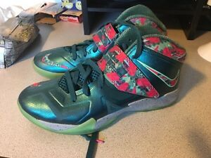 Lebrons basletball shoes