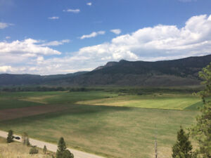 Land for sale 445 acres Westwold bc