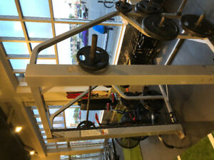 Cybex Smith Machine (w/