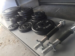 204 LBS metal weight lifting plates for sale