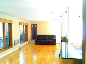Large Penthouse Condo - downtown Montreal