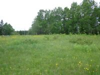 land in cormack