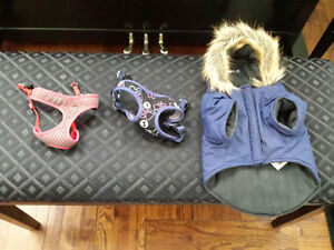 Excellent Condition Small Dog Coat and Harnesses