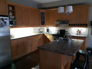 Solid Maple Kitchen Cabinet Doors and Drawers