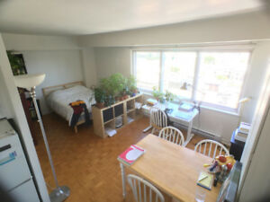 Studio/bachelor 1 .5  McGill ghetto