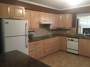 Mint one of a kind kitchen and counter tops with appliances