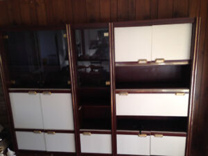 $350 Beautiful Multi Functional Wall Unit only $350