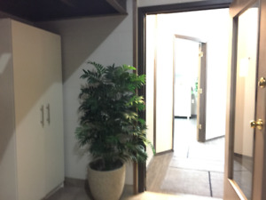 TURNKEY SPACE READY FOR OFFICE OR ESTHETICS
