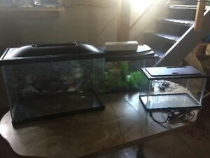 Aquariums for Sale