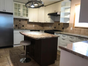 RENOVATED HIGH END DUPLEX WITH UPPER &  LOWER SUITES!