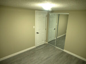 Newly Renovated 2+1 Bedroom Townhouse Kitchener / Waterloo Kitchener Area image 9