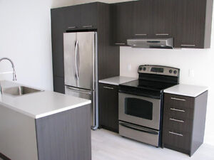 Modern 1 bedroom, 1 bath, in coveted MV3 Project. (2013 const)