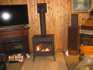 Enviro Cda Westport Natural Gas of Propane Fireplace 2 mths old