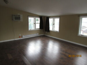 Spacious and bright 3+ bedroom upper duplex for rent