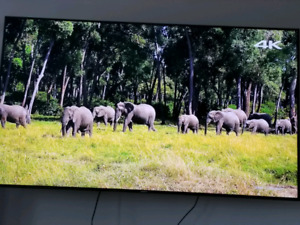 75 inch Samsung led television