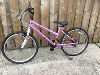 Dunlop Sport Breeze mountain bike