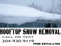 ROOFTOP SNOW  AND ICE DAM REMOVAL