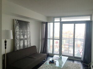 DOWNTOWN FURNISHED 1 BEDROOM CONDO 3 MONTH LEASE AVAILABLE JAN