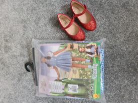 Dorothy Dressing up outfit age 3-4 years