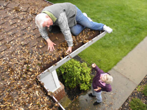 Gutter Cleaning Package Rental