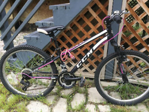 "Youth 24"" Mountain bike - excellent condition"