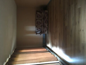 $700.00 2 bed + den , hydro and heat included - Houston BC
