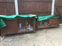 2 rabbit hutches for sale or separate