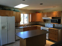 Kitchen cabinets, island, counter top & appliances for sale