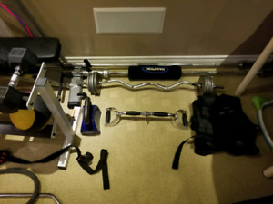 Free weights, dumbbells, Olympic bars and weights, rack, cable m
