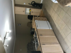 EXECUTIVE 1 Bedroom basement apartment for rent.