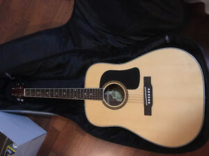 D10 Series Washburn Guitar