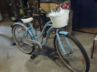 Supercycle Cruiser Classic