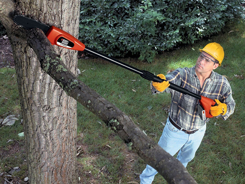 How To Use A Pole Tree Trimmer Ebay