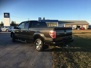 2012 Ford F-150 XLT Kawartha Lakes Peterborough Area image 3