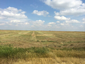 SASKATCHEWAN PASTURE AND HAY LAND 5% RETURN Regina Regina Area image 3