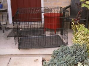 Large Dog Cage, with Divider