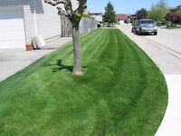Total lawn care services by Dynasty Landscaping